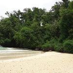 Photo de Frenchman's Cove