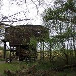 Birdwatching hide at nearby Minsmere