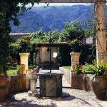 The Salvia Well