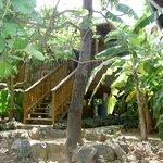 Foto de Hidden Garden Cabins