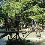 Jungle / Waterfall Trek