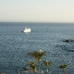 View of Sea of Cortez from Room Balcony