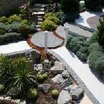 Lush mediterranean gardens
