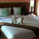 Nice room with elephant-styled-folded towels - pleasantly surprised