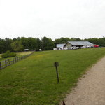 one of the horse barns