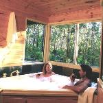 Your own private twin spa with forest views