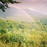 rainbow above Stuzhytsa primeval forest (Ukraine)