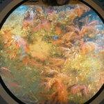潜水艦の中から写真!サンゴが真っ赤です