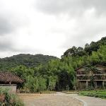 Garden Villas Area