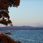 il panorama che si vede dalla pineta