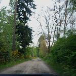 Dirt road to the Green Cat B&B