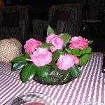 Camelias as table decoration