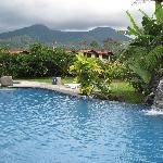 Beautiful pool with fountain