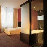Double Room - Hotel Villa Roka - Bansko, Bulgaria