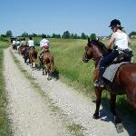 Riding in the countryside
