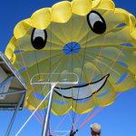 Skys the Limit parasail