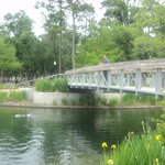 Hermann's Park