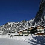 Photo of Hotel Roy