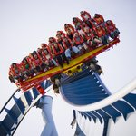 Парк развлечений Busch Gardens