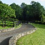 Driveway to Oakwood Cottage