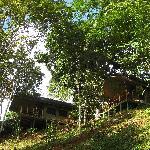 Unite yourself with nature in the Rio Tico Safari Lodge