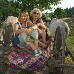 visite d'un village au pas des boeufs