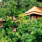 Villas Zolitude : autre vue des villas