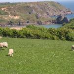 view of Three Cliffs Bay