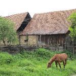 Archita vilage