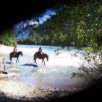 Horses crossing river