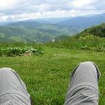 Hiking Purchase Knob
