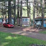 Pine Springs Cabins