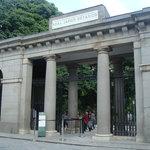 Royal Botanic Garden (Real Jardin Botanico)