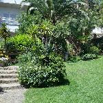 Neptuno garden area