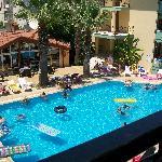 pool area palm garden keskin