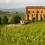 View of Locanda from Vineyards