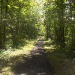 Miles of scenic trails