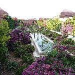 Jardins intérieurs à découvrir
