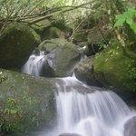 Seibu Trail