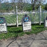 Ben & Jerry's Ice Cream Graveyard