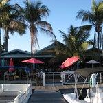 Foto de Parrot Key Caribbean Grill