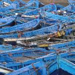 Boats and boats and more blue boats