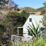 Chalets are private, nestled in the native bush