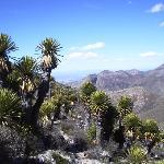 El Quemado, belle ballade sur la montagne sacrée des indiens Huichol
