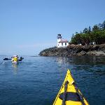 Kayak Day Tours