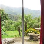 View from my bed in Villa Joop