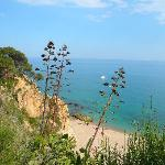 nature around Calella