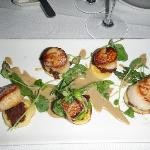 Scallops with garlic porcini sauce