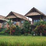Tegal Sari accommodation Ubud