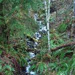 Area Waterfall